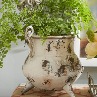 Aureliana Iron Vase