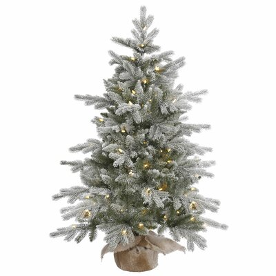 Flocked Christmas Trees You Ll Love Wayfair