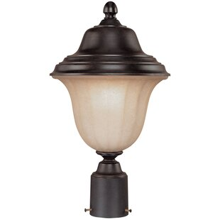 Affordable Teminot Outdoor 1-Light Brown Lantern Head By Bloomsbury Market