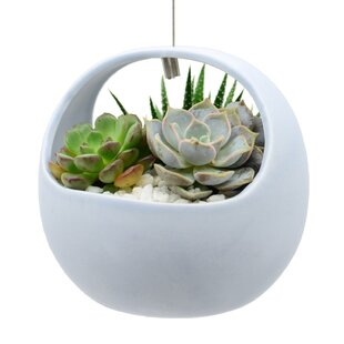 Coshocton Basket Style Air Ceramic Hanging Planter By Wrought Studio