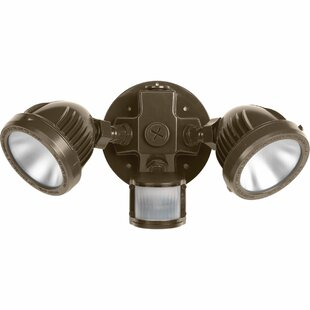 Kiersten 2-Light Outdoor Floodlight