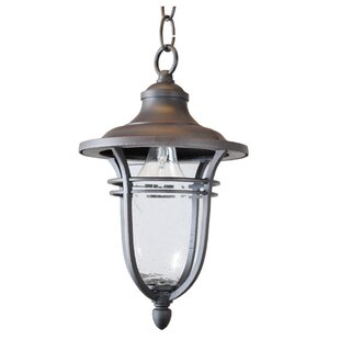 Charlton Home Ferrante 1-Light Outdoor Hanging Lantern