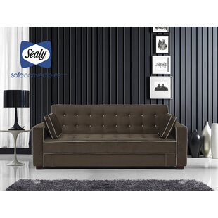Savings Belize Sofa by Sealy Sofa Convertibles Reviews (2019) & Buyer's Guide