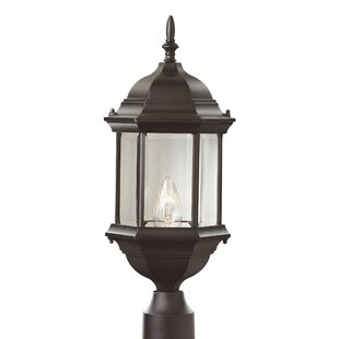 Alcott Hill Savanna 1-Light Lantern Head