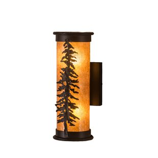 Affordable Wylie 2-Light Outdoor Sconce By Loon Peak