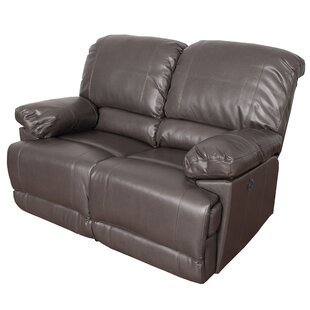 Red Barrel Studio Coyer Reclining Loveseat