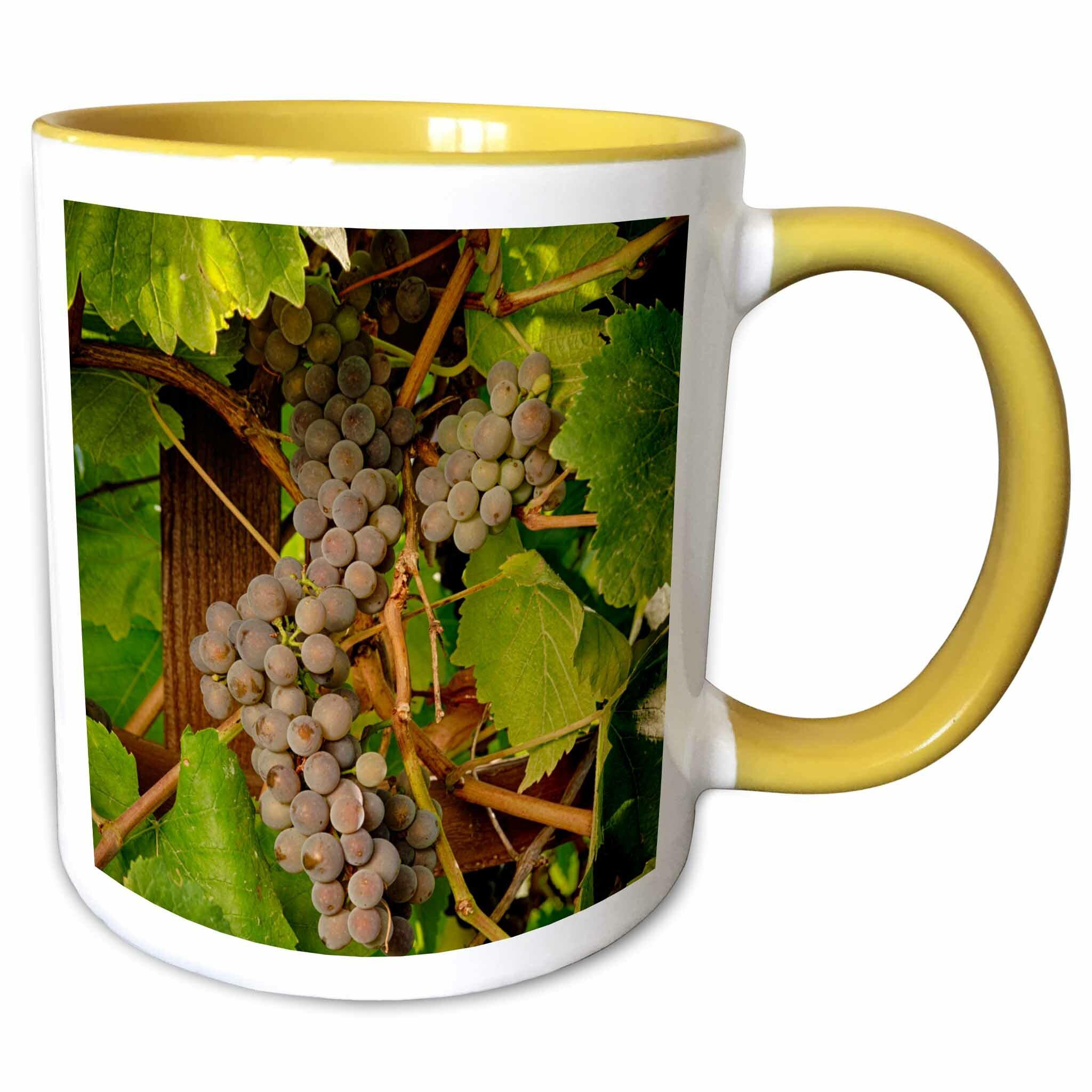 Symple Stuff Mangan Usa Oregon Keizer Pinot Gris Grape Vineyard Coffee Mug Wayfair