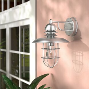 Beachcrest Home Clarke 1-Light Outdoor Wall Lantern