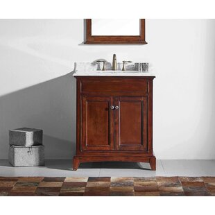 Strickland Solid Wood 30 Single Bathroom Vanity Set by Darby Home Co