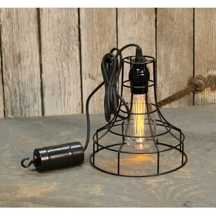 Lupine Hanging Battery Cage Timer 1 Light Dome Pendant