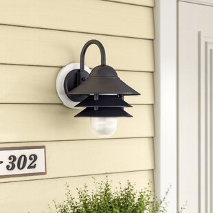 Breakwater Bay Caja 1-Light Outdoor Barn Light