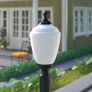 Charlton Home Quinton Outdoor 1-Light Lantern Head