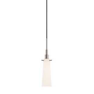 Timmons 1-Light Cone Penda..