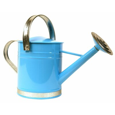 0.5 Gallon Basic Watering Can Arcadia Garden Products Color: Blue