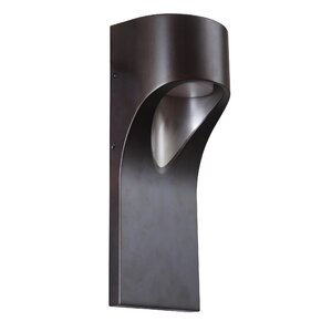 Chaparro 1-Light Outdoor Sconce