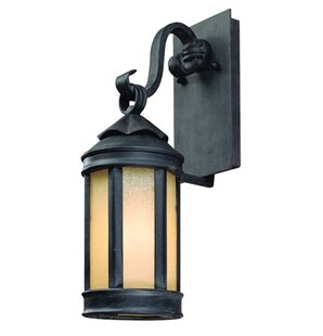Reviews Theodore 1-Light Outdoor Wall Lantern in Aged Iron By Darby Home Co