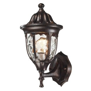 Fleur De Lis Living Amy 1-Light Outdoor Sconce