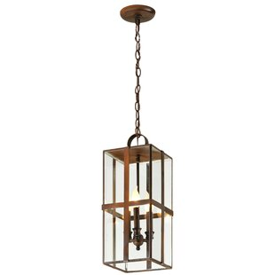 Fleur De Lis Living Channell 3-Light Outdoor Hanging Lantern