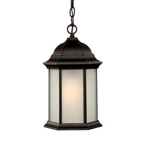 Pruitt 1-Light Outdoor Hanging Lantern