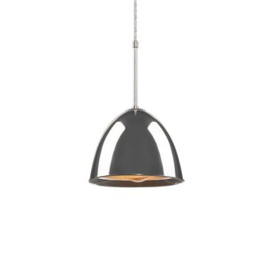 Bairoil 1-Light Cone Pendant by Ebern Designs