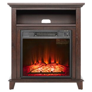 Gilbertson Wood Mantel Electric Fireplace by Charlton Home