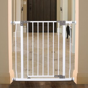 Half Door Gate Wayfair