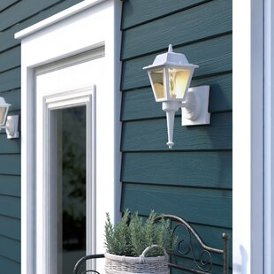 Chidester 1-Light Outdoor Sconce