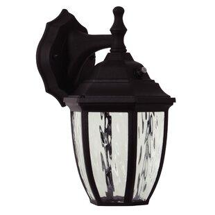 Charlton Home Thaddeus LED Outdoor Wall Lantern