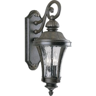 Coupon Triplehorn 2-Light Wall Lantern By Alcott Hill