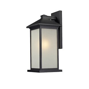 Best Choices Perino 1-Light Outdoor Wall Lantern By Loon Peak