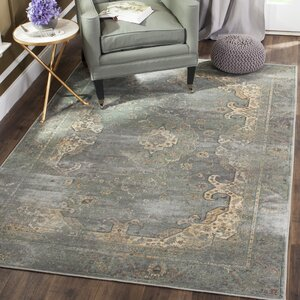 Buy Obrien Gray Area Rug!