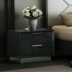 Arushi 2 Drawer Nightstand by Orren Ellis