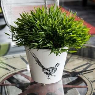 Brentwood Woodland Pheasant Plant Pot (Set Of 3) By Alpen Home