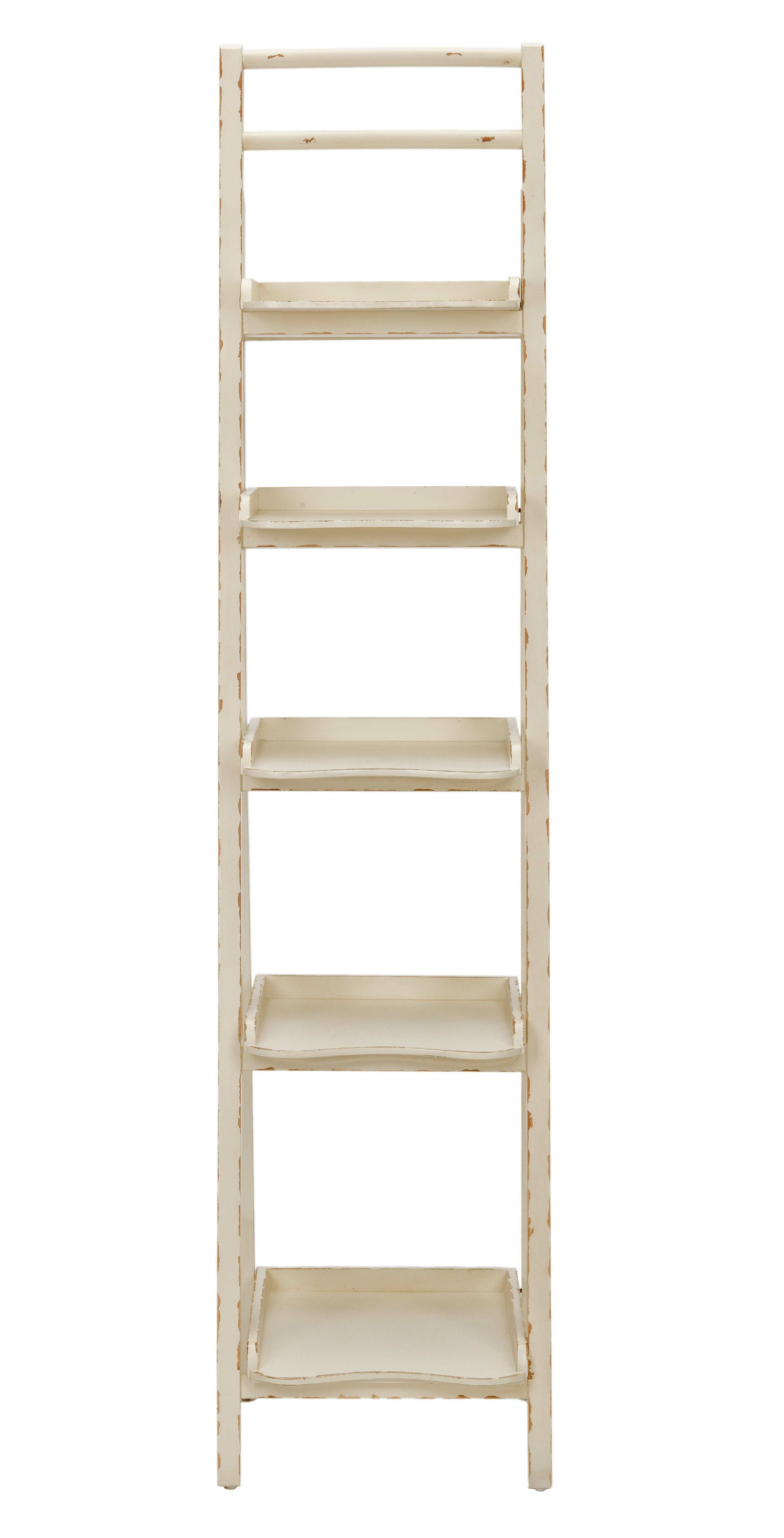 Asher Ladder Bookcase