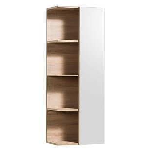 Toby 45 X 120cm Wall Mounted Cabinet By Mercury Row
