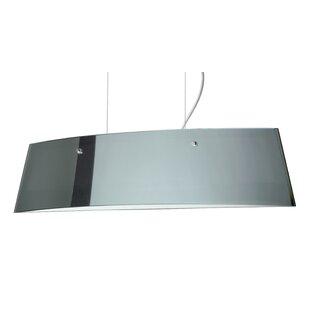 Silhouette Pendant by Besa Lighting