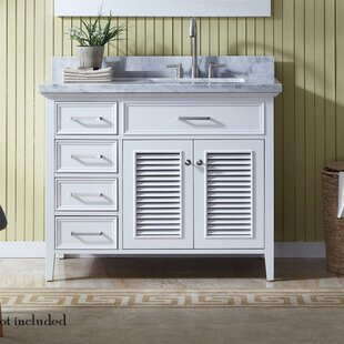 Hamil Modern 43 Single Bathroom Vanity Set by Highland Dunes