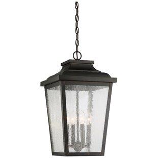 Mayhugh 4-Light Outdoor Hanging Lantern