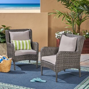 Kennelly Patio Chair with Cushions (Set of 2)