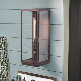 Sasha 1-Light Metal Outdoor Wall Lantern by Trent Austin Design