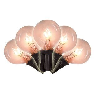 Brite Star 16.5 ft. 25-Light Globe String Lights