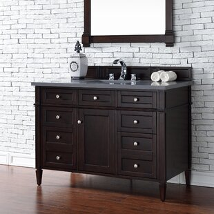 Deleon 48 Single Burnished Mahogany Wood Base Bathroom Vanity Set by Darby Home Co
