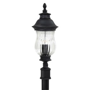 Newport Outdoor 2-Light Lantern Head by Great Outdoors by Minka