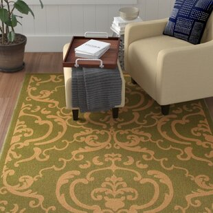 Short Olive/Natural Indoor/Outdoor Area Rug
