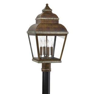 Saniyah Outdoor 4-Light Lantern Head by Bloomsbury Market