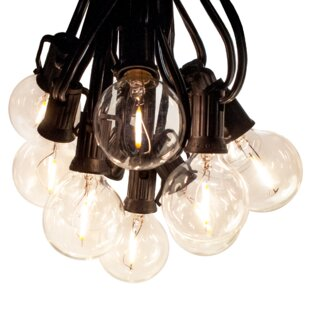 Hinds 50 ft. 50-Light Globe String Light by The Holiday Aisle