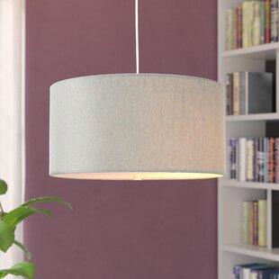 Orren Ellis Kimbell Swag Plug-In 2-Light Pendant