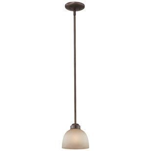 Top Reviews Stivers 1-Light Dome Pendant By Alcott Hill