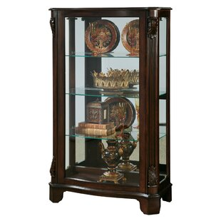 Akerman Mantel Lighted Curio Cabinet by Canora Grey
