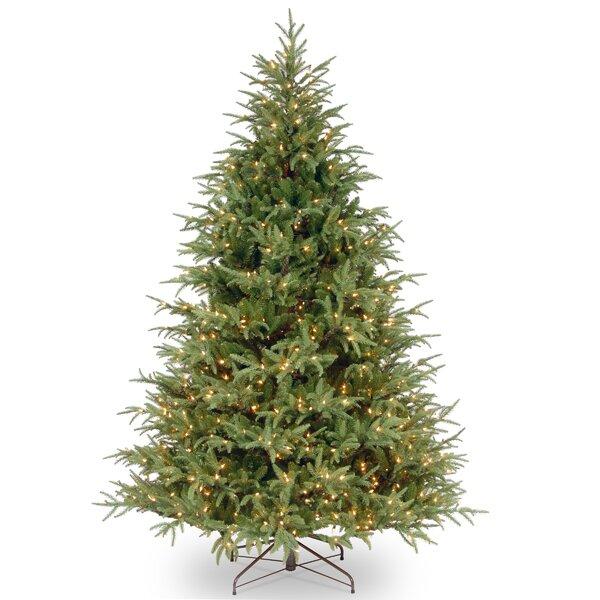 dual color christmas tree wayfair - How Many Lights For Christmas Tree